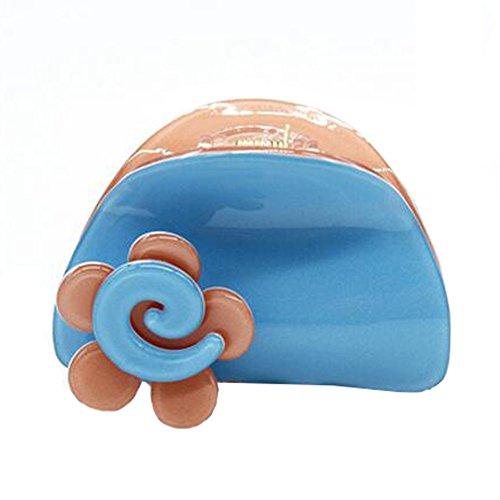 2PCS Femmes élégantes Clips de cheveux Barrettes Claw épingle à cheveux Accessoires Clips de style simple et pratique,N