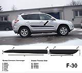 Spangenberg Seitenschutzleisten schwarz für Toyota RAV4 III SUV Kombi Baujahre 11.2005-11.2012 F30 (370003004)