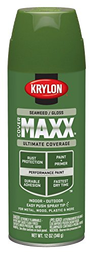 krylon-k09139000-covermaxx-spray-de-pintura-brillante-algas-12-oz
