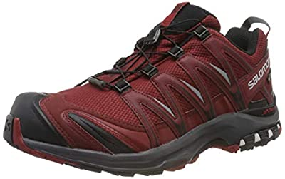 Salomon Men's Trail Running Shoes, XA Pro 3D GTX