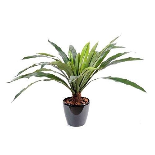 arbuste artificiel asplenium tronc *30 - h : 60