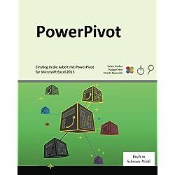 PowerPivot: Einstieg in die Arbeit mit PowerPivot für Microsoft Excel 2013