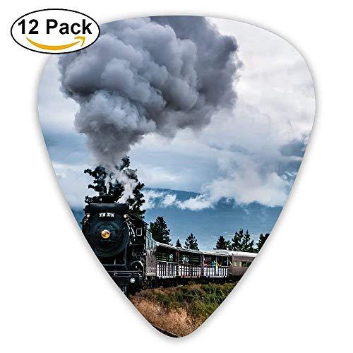 Erstaunliche Eisenbahn Zug Pfeife Rauch Himmel Plektrum 12pack Für E-Gitarre, Akustikgitarre, Mandoline und Bass (Zug Pfeifen Gitarre)