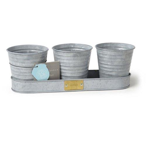 burgon-ball-gsc-herbgalv-sophie-conran-galvanized-herb-pots