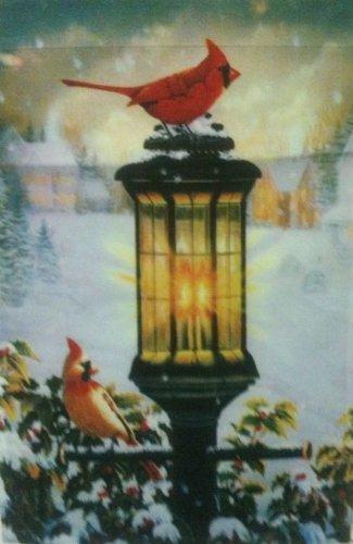Evening Glow Inverno Giardino Bandiera Cardinale (Cardinale Giardino)