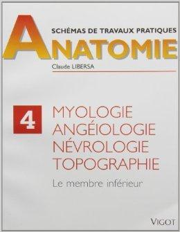 Myologie, angiologie, nvrologie, topographie. Membre infrieur de C. Libersa ( 21 dcembre 1998 )