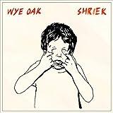 Songtexte von Wye Oak - Shriek