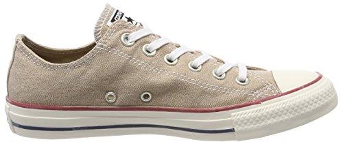 Converse Unisex Adulto Ctas Ox Vintage Cachi Sneaker Beige (vintage Kaki)
