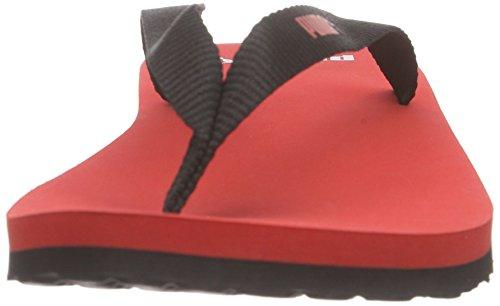 PumaSun Flip - Infradito Unisex – Adulto Rosso (Rot (puma red-black 02))