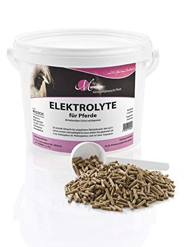 M-Premium ELEKTROLYTE – 1,5 kg – Ergänzungsfuttermittel für Pferde – Zum Erhalt der Gesundheit und der normalen Leistungsfähigkeit bei erhöhten Flüssigkeitsbedarf – Pellets