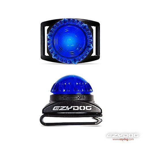 EZYDOG Adventure Dog Collar / Harness Light – BLUE