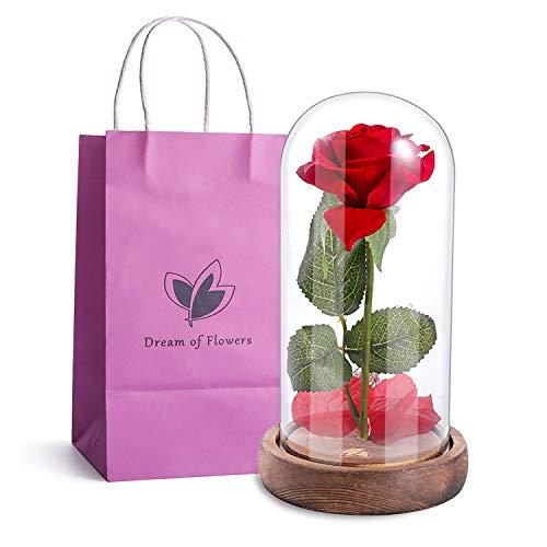 Dream of Flowers rojo seda rosa y LED blanco cálido luces cuerdas...