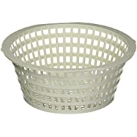 Hayward SPX1090WMSB Skimmer Basket for SP1090WM