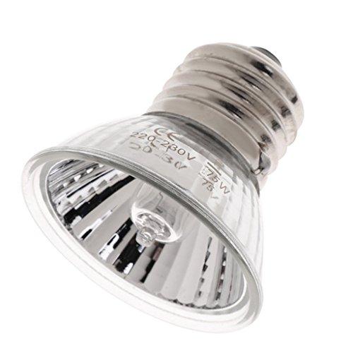 perfk Terrarium Wärmelampe UVA UVB Glühbirne für Wasserschildkröten, Schlangen, Eidechsen, Spinnen, Frösche - die Synthese von Vitamin D3 zu Fördern - 75w