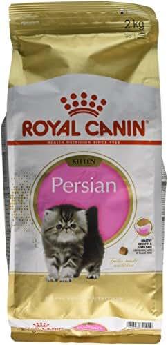 Royal Canin : Croquettes Feline Breed Nutri 32: 2kg