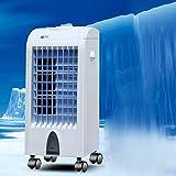 Climatiseur Portable - 2019 New Mini Climatiseur Mobile, Refroidisseur d'air Portable,Rafraichisseur d'air Et Ventilateur, Climatiseur Mobile avec télécommande, 20 h d'utilisation Continue Max (D)