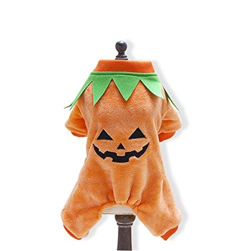 PETCUTE Hund Halloween Kostüme Kürbis Hündchen Weihnachten Kleider für Haustierkatze Winter Warm Kleider Party Kapuzenpullover Mantel (Badeanzug Chihuahua)