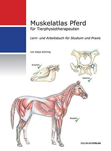 Muskelatlas Pferd: Lern- und Arbeitsbuch für Tierphysiotherapeuten