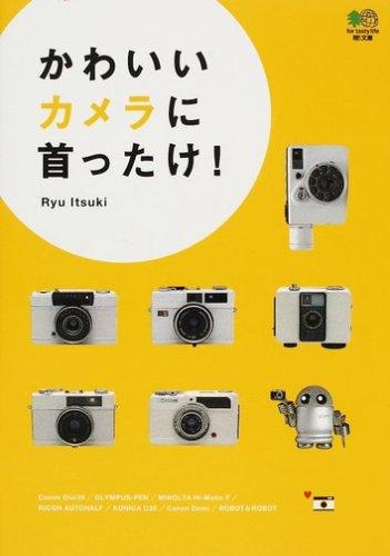 Kawaii kamera ni kubittake
