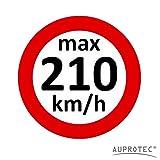 Geschwindigkeitsaufkleber Winterreifen Aufkleber 160 - 240 km/h Auswahl: (5 Stück, 210 km/h)
