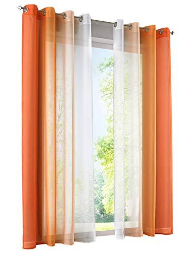 BAILEY JO 2er-Pack Gardinen mit Verlauf-Farben Muster Vorhang Transparent Voile Vorhänge (BxH 140x245cm, Orange mit Ösen)