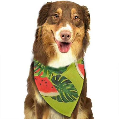 Osmykqe Dog Bandanas Watermelon Dog Collar Neckerchief Pet Bandana Puppy Towel