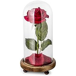 Rosa de Seda roja y luz LED con pétalos caídos en la cúpula de Vidrio en la Base de Madera para la decoración del hogar Boda Cumpleaños Día de la Madre