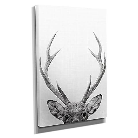 Deer Portrait - Kunstdruck auf Leinwand (30x45 cm) zum Verschönern Ihrer Wohnung. Verschiedene Formate auf Echtholzrahmen. Höchste Qualität.