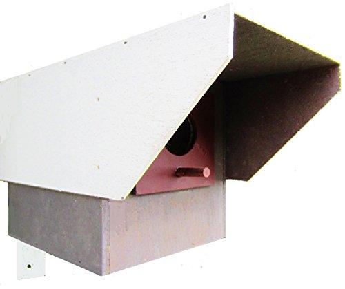 Hüwüknü, Vogelhaus, Überwachungskamera Atrappe