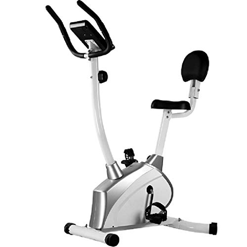 Yunyisujiao Spinning Bike Pedal Sports Bike Ufficio Tapis roulant Home Dynamic Single Fitness Attrezzature Indoor Controllo Magnetico Dimagrante Bicicletta (Color : Silver)