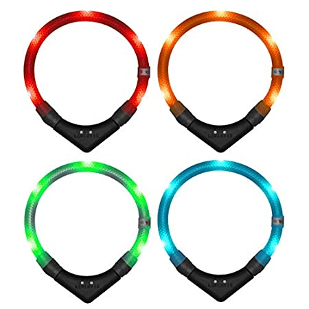 LEUCHTIE® Leuchthalsband Pro Easy Charge I LED Halsband für Hunde I USB aufladbar I wasserdicht I extrem hell