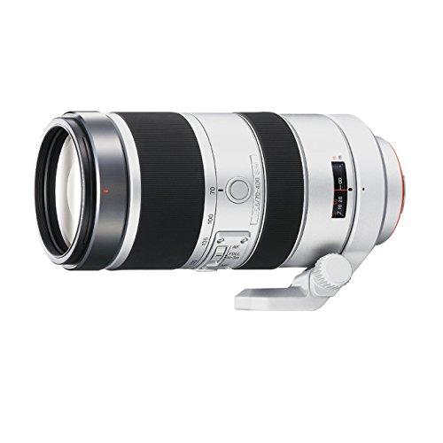 Sony SAL-70400 F4-5,6 / 70-400mm G SSM Objektiv der G-Serie (77 mm Filtergewinde) (Sony A99 Kamera)