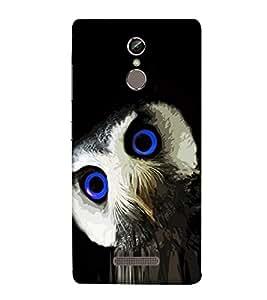 Blue Eyed Owl 3D Hard Polycarbonate Designer Back Case Cover for Gionee S6s