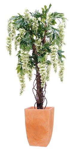 Red Hot Plants Glycine artificielle - Crème - 1,5 m de haut Tronc en bois véritable et grandes fleurs