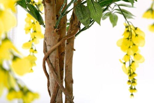 Goldregen 1,80 m künstlich Kunstbaum Kunstpflanze Echtholzstamm - 2