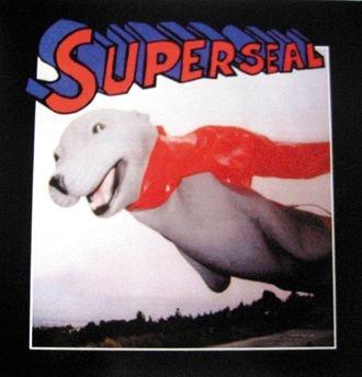Superseal Breaks