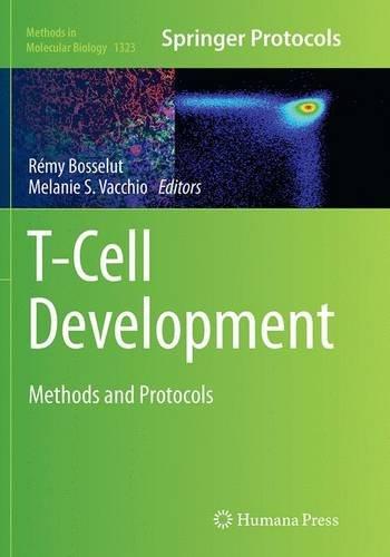 t-cell-development
