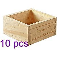 Weanty - Cajas cuadradas para plantas, 10 unidades, para jardinería, suculentas, maceta