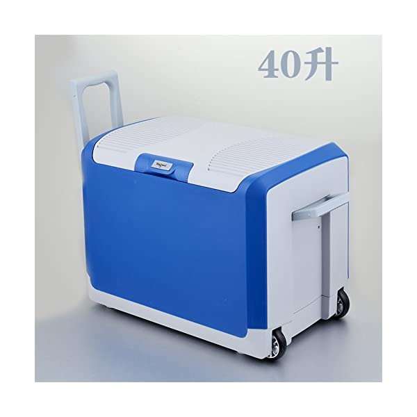 40l Car Refrigerator,Large Capacity Mini Fridge Car Dual Use Cold And Warm Box Car Mini Small Fridge 24v Cold Box Portable Mini Fridge 416qSGlsP6L