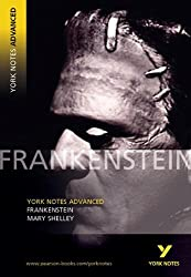 Frankenstein (York Notes Advanced)