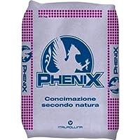 Italpollina - Phenix Abono orgánico, rico de potasio - Bolsa de ...