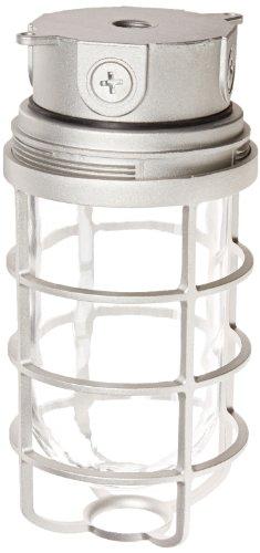 Rab Lighting Guard (Rab Beleuchtung vx200dg vaporproof VX 10,2cm Deckenleuchte Box Passepartout mit Glas Globus und Guard, A19Typ, Aluminium, 300W Power, 1/5,1cm Hub, natur)