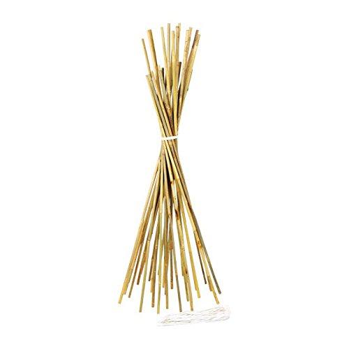 Preisvergleich Produktbild Legler 6486 - Bambus Bausatz, 3-er Set