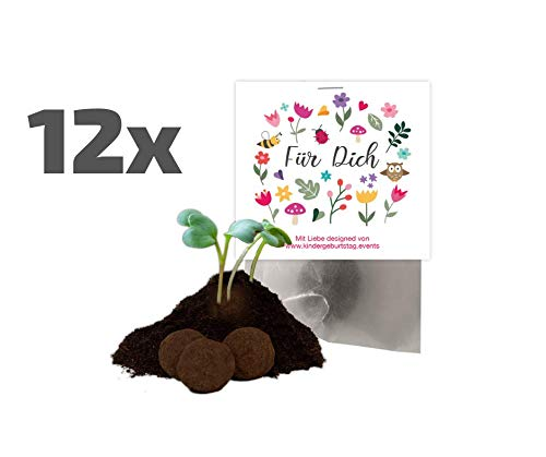 """12 """"Für Dich"""" Samenbomben als Mitgebsel / Geschenk / Aufmerksamkeit / Seedbombs / Partytüten / Mitgebseltüten / Geschenktüten / Danksagung / Bedanken / Give-aways / Kindergeburtstag / Geburtstag"""