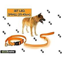 ECOBELLE® set Collar de perro + Correa de perro luminoso LED, Alta Visibilidad y Securidad por la noche, 3 Modos de luz, USB Recargable (2 cables USB incluidos), color NARANJA. Tamaño correa 1.20m, Tamaño collar PEQUEÑO 35-43cm (regulable)