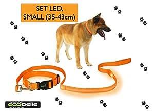 ECOBELLE® set collare + guinzaglio cane alta visibilita' LED luminoso con 3 modalita' di illuminazione, ricaricabile con USB e dotato di cavo USB, colore ARANCIO. Lunghezza guinzaglio 1.20m, collare taglia SMALL 35-43cm