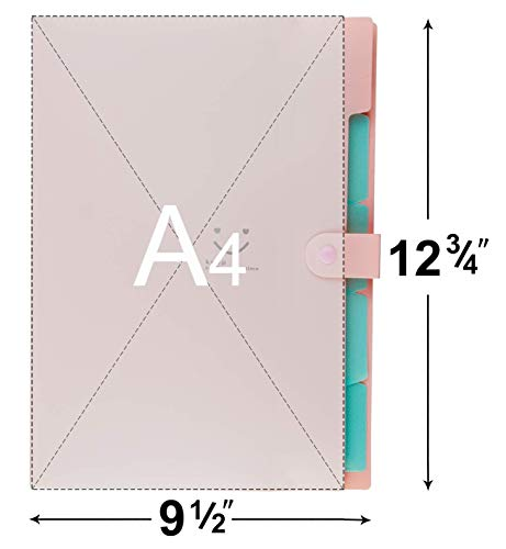 Zoom IMG-2 plastic expanding file folders accordion