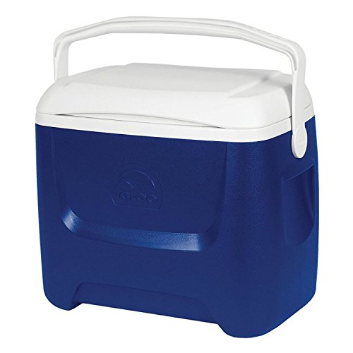 Igloo 44558 portátil Mini Nevera, Azul, 46x28x40