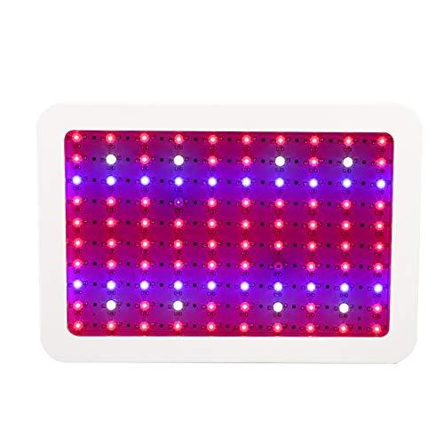 Zerone LED Lámpara de IA Planta, 1000W Espectro Completo Crece IA Luz