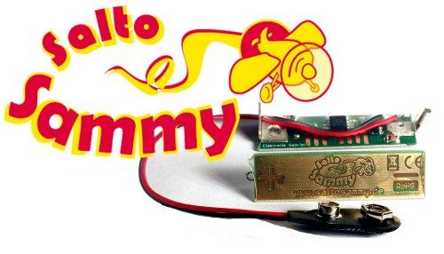 Salto-Sammy-Tuning-fr-Looping-Louie